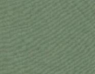 01-16110 VERDE