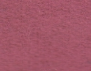 01-16127 FUSCIA