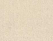 01-16143 PIEDRA